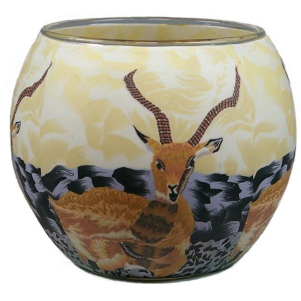Antilope Windlicht Glas 11 x 11 x 9 cm