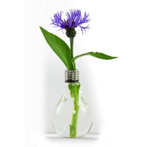 GREENbulb -eine Vase in Glühlampenform