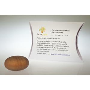 Handschmeichler Eberesche 45mm mit Baumhoroskop